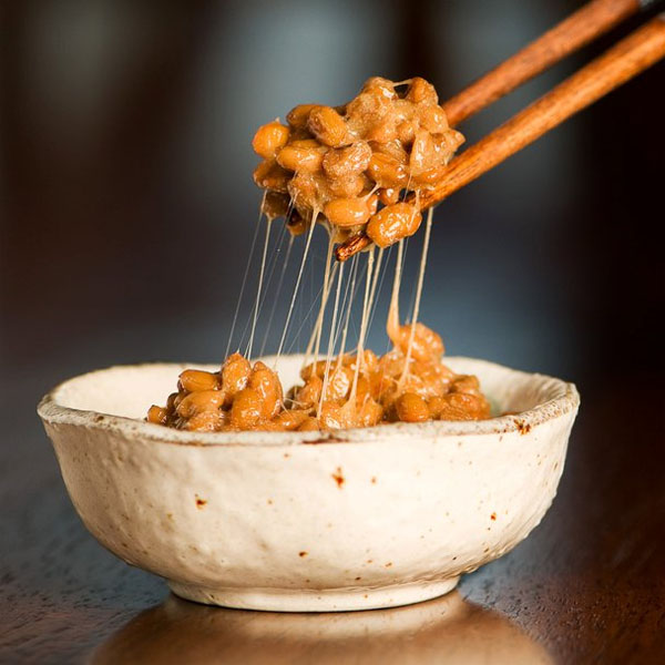 natto bowl from japan