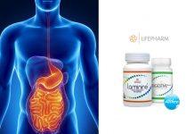 laminine digestive+++ stomach